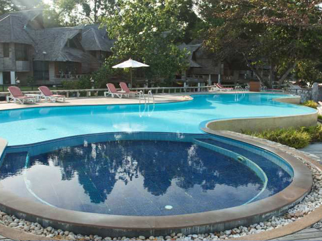 in ground pool shape and design